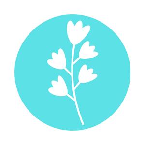 Time to Bloom coachingstraject - Silke Desaever - Diëtiste en lactatiekundige